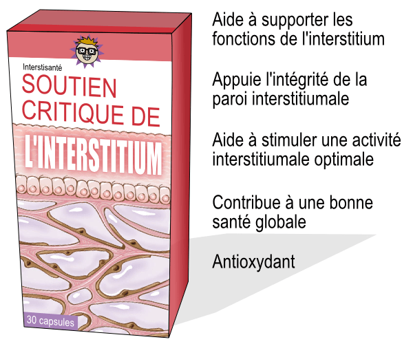 interstitium-11