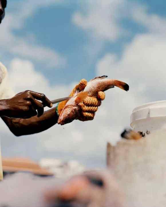 Un poisson éventré en Guadeloupe photographié par Gregory Halpern