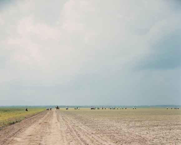 © Alec Soth - The Farm, Angola State Prison - Louisiane