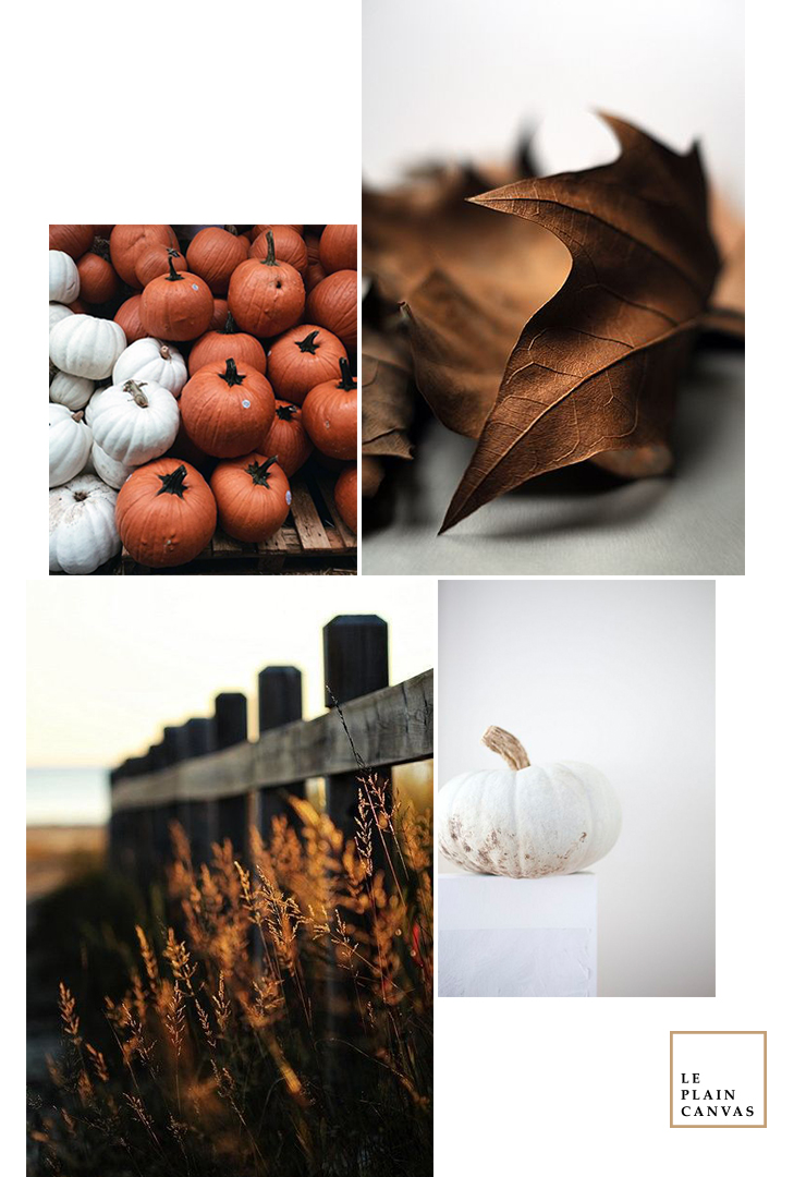 20161024_lpc_moodboard_autumnvibes2a