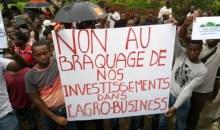 Agro-business/Après la proposition de remboursement : Les souscripteurs soupçonnent l'Etat de vouloir bloquer les RSI #Investissement