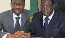 Léger réaménagement à la tête du gouvernement ivoirien : Théophile Ahoua N'Doli à la place de Gnamien N'Goran et N'Golo Fatogoma Coulibaly remplace Seydou Diarra