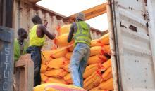 [Côte d'Ivoire Riz avarié] Vers des sanctions judiciaires contre les sociétés criminelles