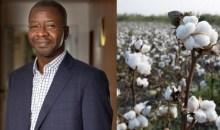 [Côte d'Ivoire] Jean-François Touré devient le nouveau directeur général de SECO, filiale Coton du groupe Olam