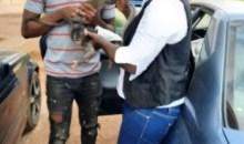 [Côte d'Ivoire/Forêt classée du Cavally] Des singeons sauvés grâce à l'ONG NOFNA
