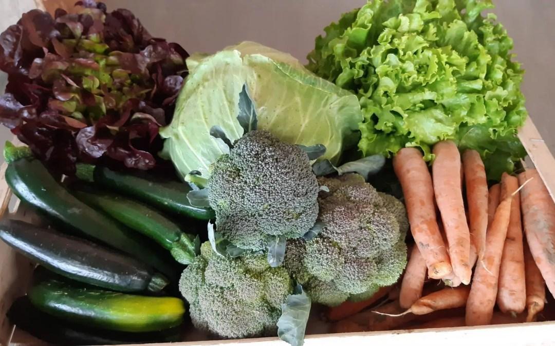 le 4 juin : Enfin des légumes de printemps
