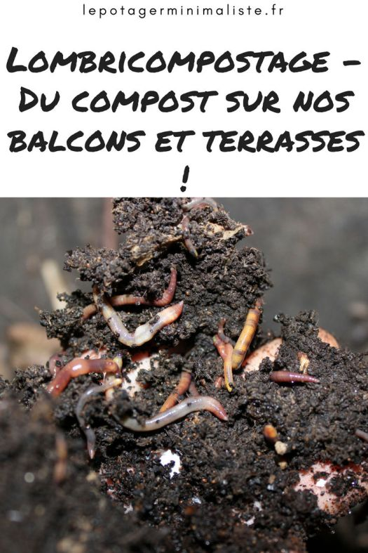 lombricompost-permaculture-potager-urbain-eisena-vers-pinterest