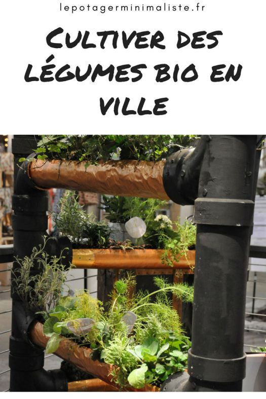 potager-balcon-terrasse-legumes-bio-ville-pinterest