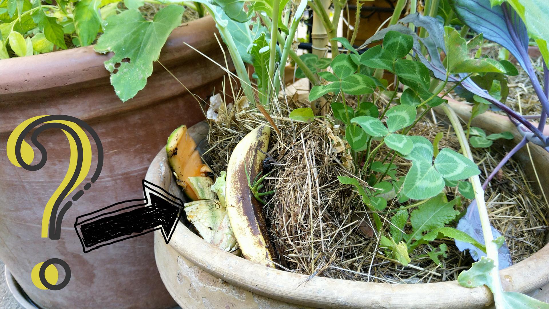 compostage-surface-lombricompostage-pot-fleurs