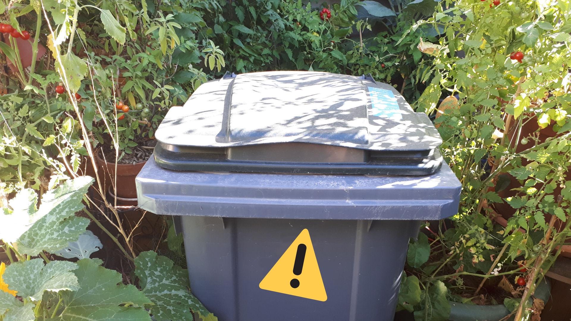 Potager-pot-fleur-poubelle-zero-dechet