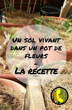 sol-vivant-pot-fleur-lepotagerminimaliste