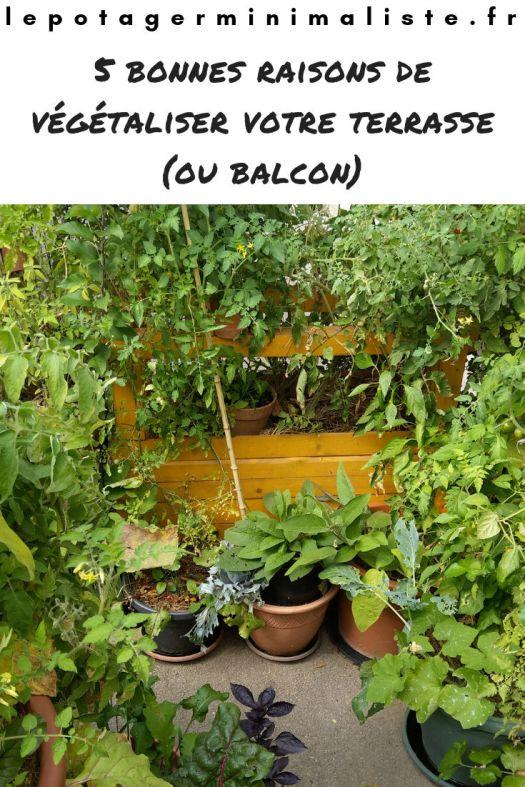 vegetaliser-balcon-terrasse-potager-bio-pinterest