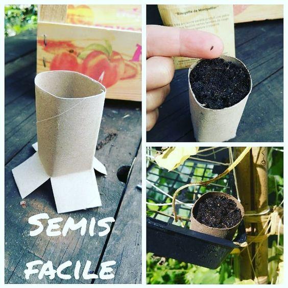 semis-facile-zero-dechet-permaculture