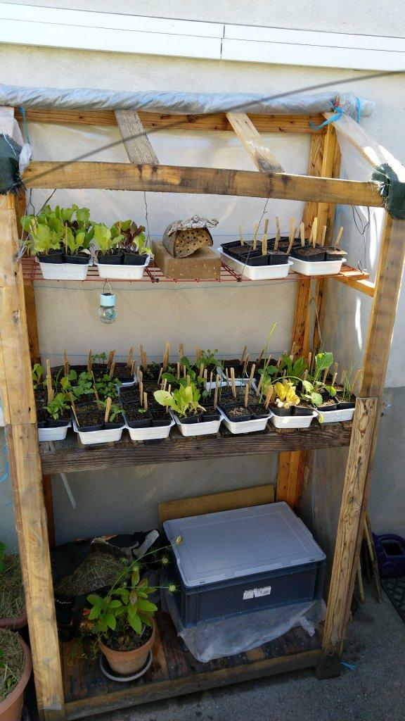 Serre en bois de palette sur terrasse (balcon) en permaculture