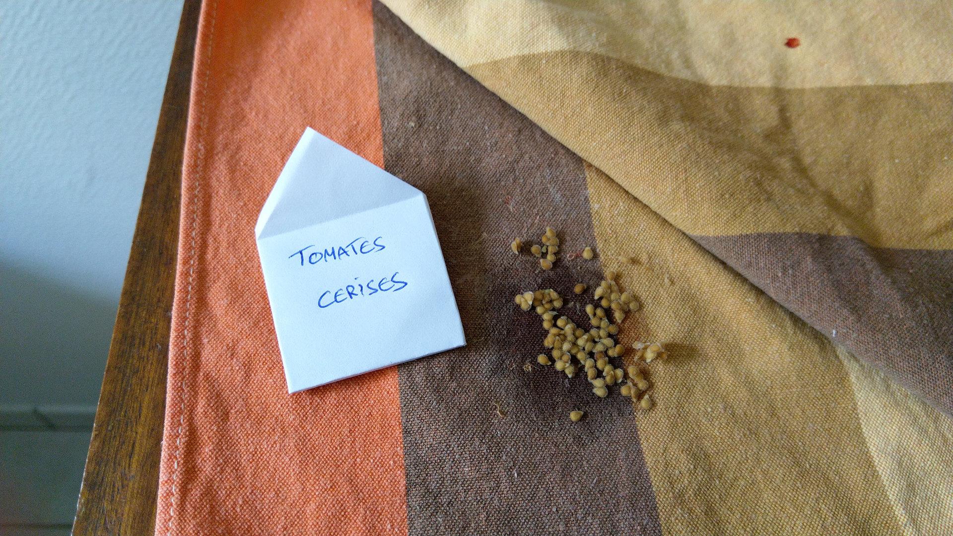 recolte-graine-tomate-sechage-sachet