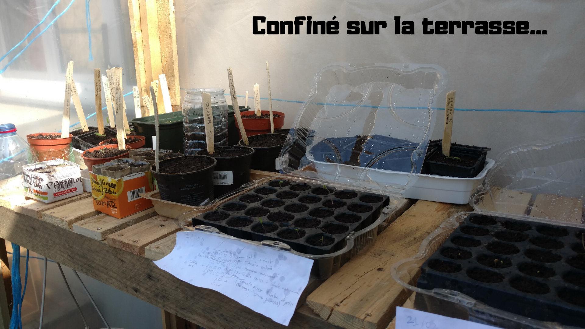 permaculture-urbaine-balcon-terrasse-semis