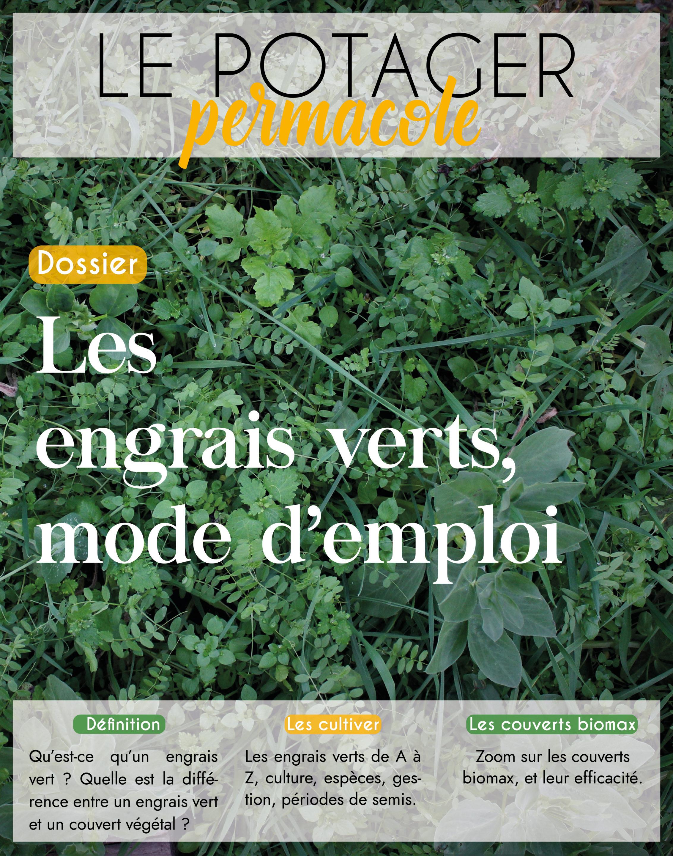 Quel Semis Faire En Septembre tout savoir sur les engrais verts. - le potager permacole