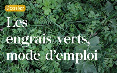 Tout savoir sur les engrais verts.