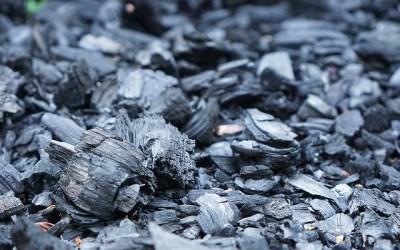 Le charbon de bois au potager : propriétés et utilisations