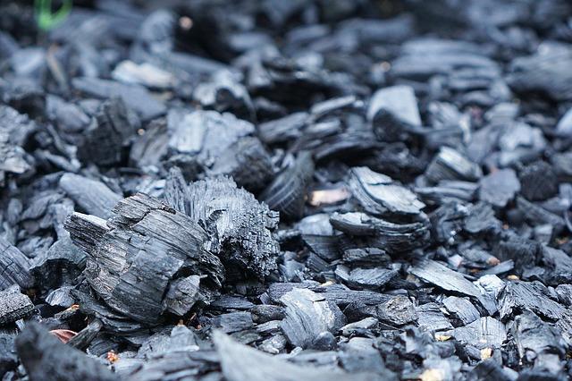 charbon de bois potager