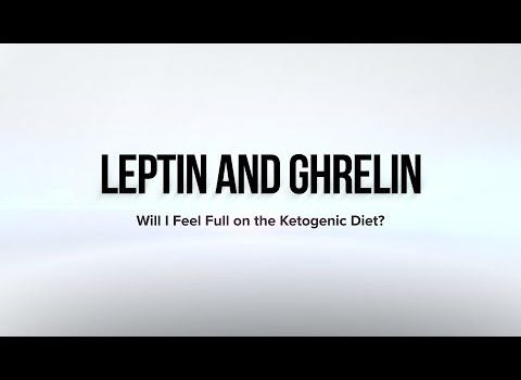 Is there a medication for leptin resistance
