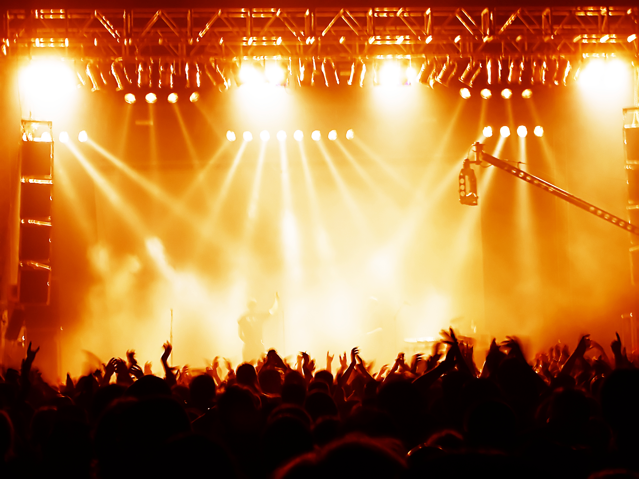 Concert Security Services