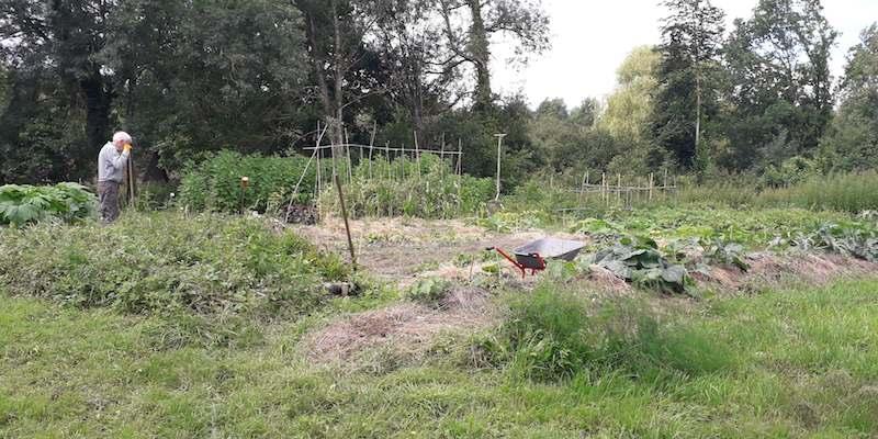 Jardin 2021