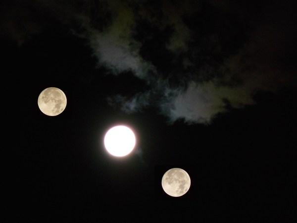 Moons over Shinkoiwa