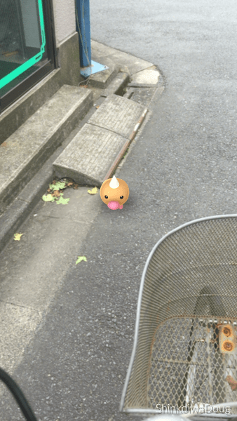 A Weedle on the road headed towards the Nakagawa. How do I know? I caught it and it's in my Pokedex!