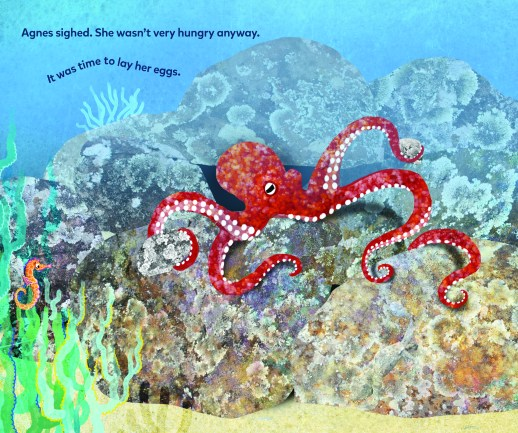 page from Love, Agnes: Postcards from an Octopus, a life cycle book