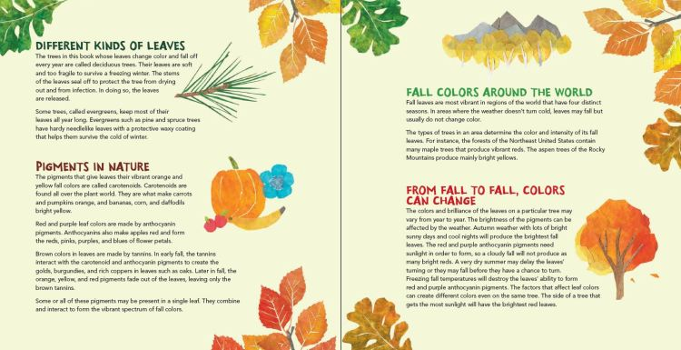 Fall Leaves-3