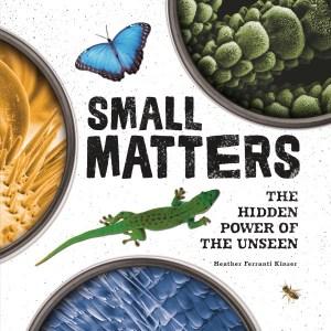 SmallMatters