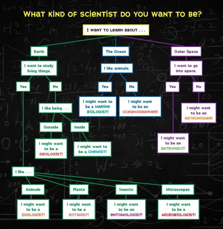 Scientist flow chart