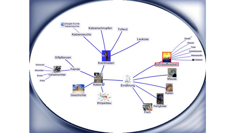 """Mind Map in der 4. Klasse zum Thema """"Katzen"""""""