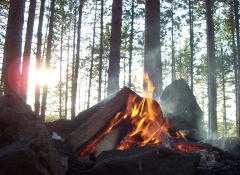 Sunset campfire. [Taken about 8:00pm - forty minutes before sunset]