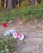 Twentysomethings from Toronto should be banned from the park. Clean up after yourselves!