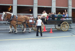 Two beautiful Clydesdales about to give folks in the Market a ride.