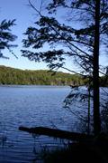 A view of Jake lake on the Hemlock Bluff trail.