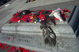 The next day (Nov 12).  The Tomb of the Unknown Soldier  covered in poppies from everyone.