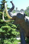 A statue of a mammoth at the Museum of Nature.