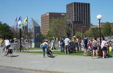 The crowds at Dows lake.
