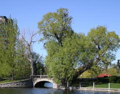 The bridge on Queen Elizabeth Drive.