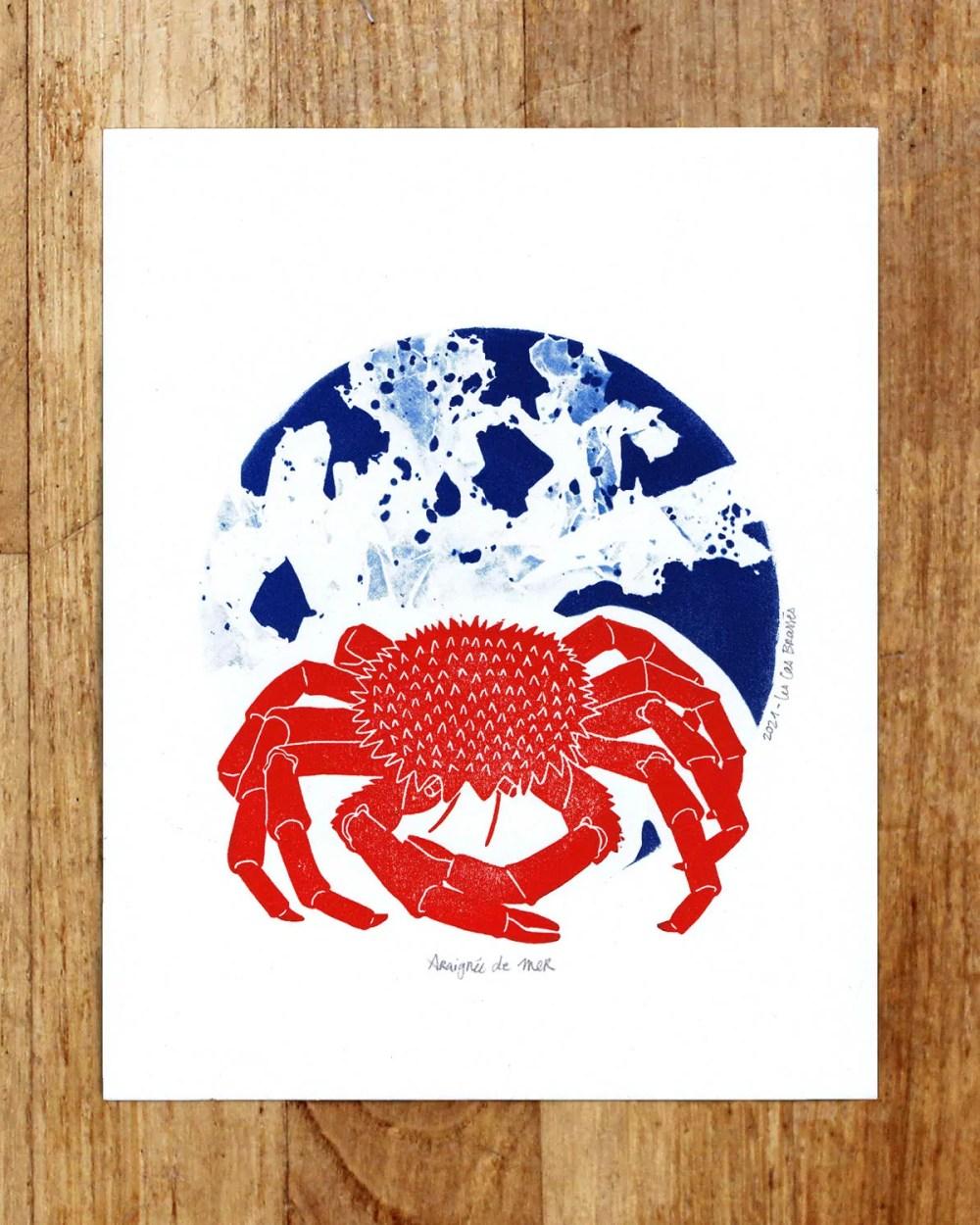 Estampe & cyanotype « Araignée de mer »