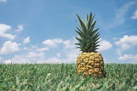 un ananas sur l'herbe, vue sur le ciel