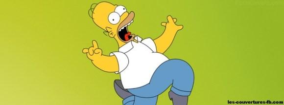 Homer-Photo de couverture journal Facebook