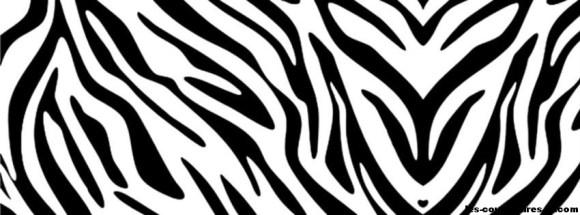 zebre-Photo de couverture journal Facebook
