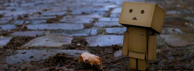 Danbo et la feuille morte - Photo de couverture journal Facebook