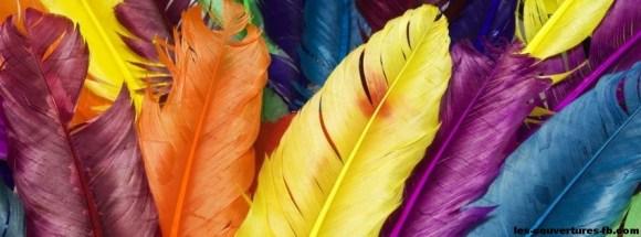 plumes colorées-photo de couverture journal facebook