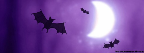 Chavue souris nuit lune couverture facebook
