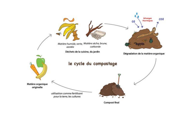 Schéma du compostage